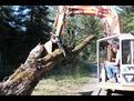 ht1035 excavator thumb 8