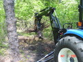 small excavator tree stumper 12