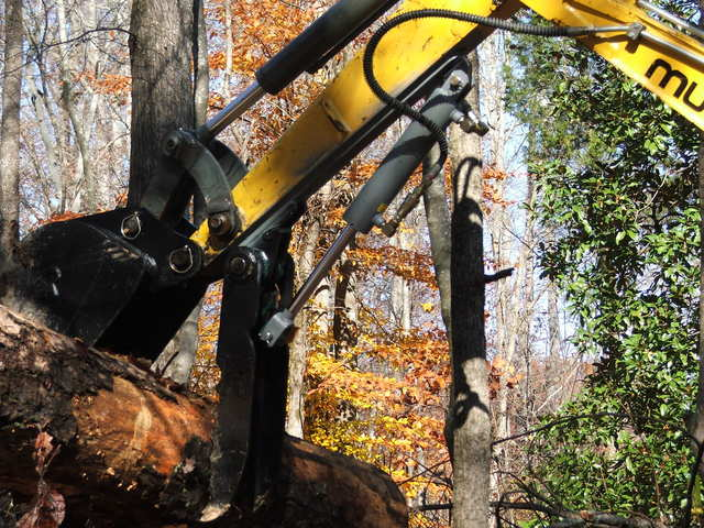 Mustang with an HT830 mini excavator thumb picking up an old tree log