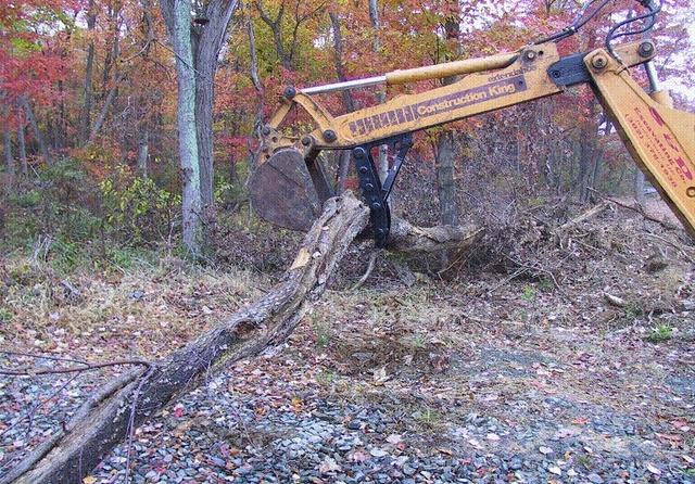 MT1035 thumb moving a large tree