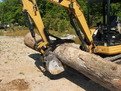 CAT mini excavator with MT830 thumb moves a log