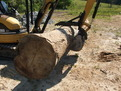 CAT mini excavator with thumb grasps log